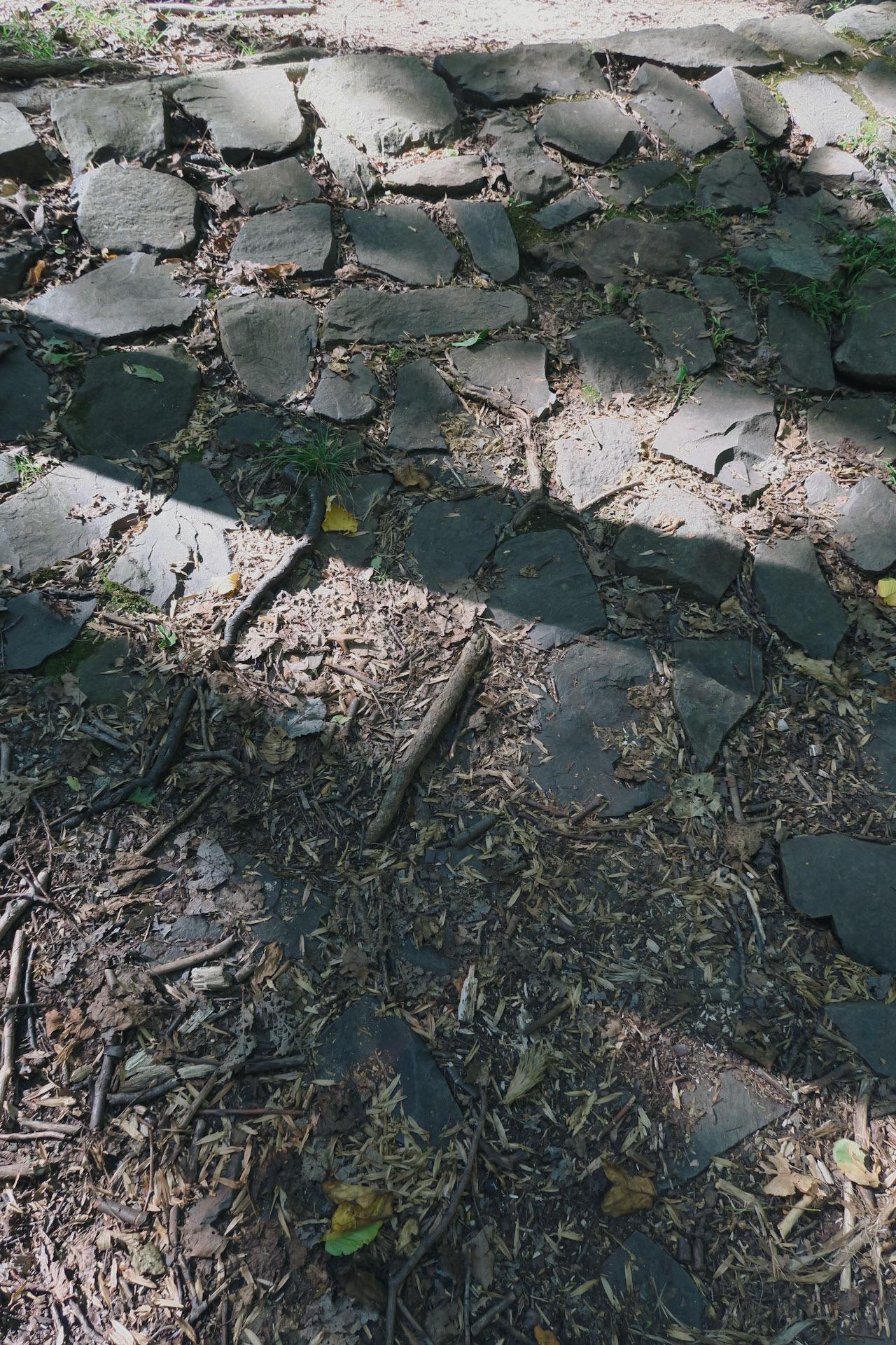 rock pathway light shadows